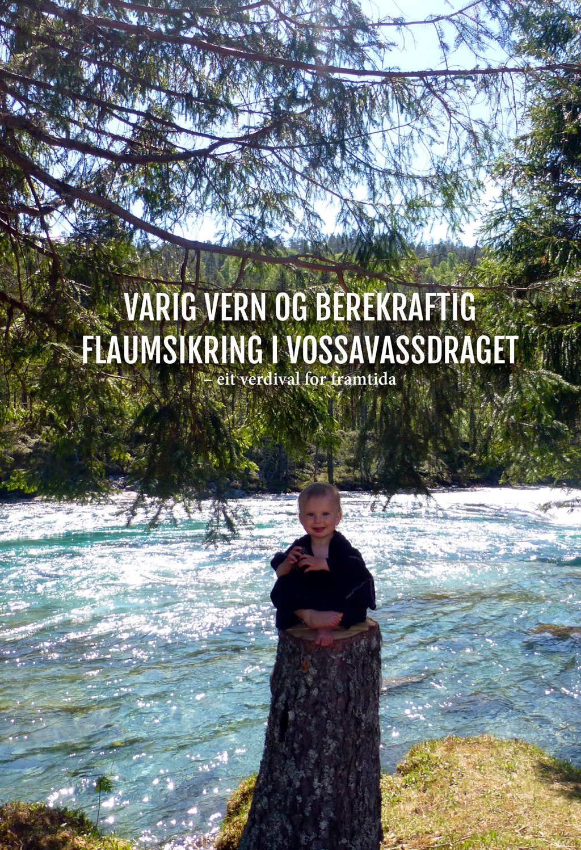 Vernebrosjyre 2017: Berekraftig flaumsikring i Vossavassdraget